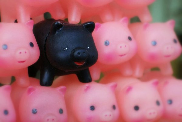 Pink pigs with one black pig toys